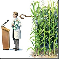 do_seed_companies_control_gm_crop_research_1