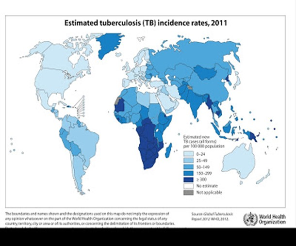 tuberculosis_incidence_global_2011